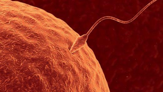 Próby zajścia w ciążę zrujnowały nasze życie seksualne – skarży się Ewa